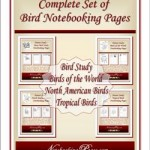 complete_bird_set_cover250