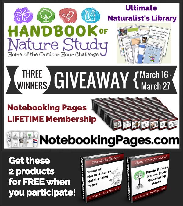 NotebookingPages.com & Outdoor Hour Challenge Giveaway