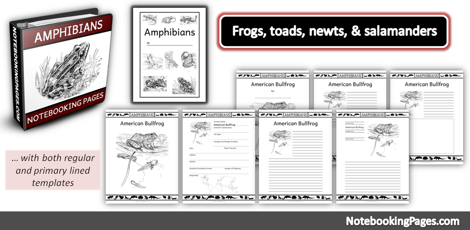 Amphibians Notebooking Pages