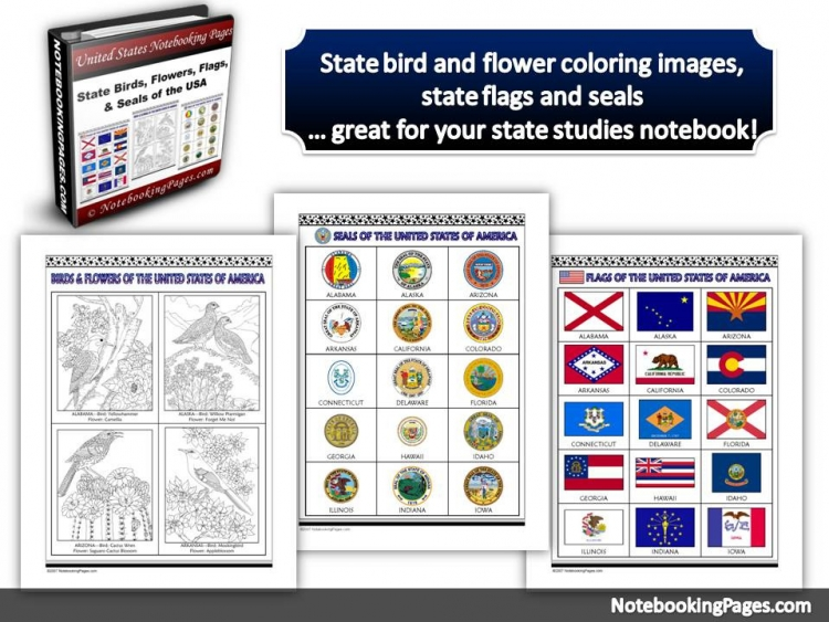 State Birds, Flags, and Seals Notebooking Pages