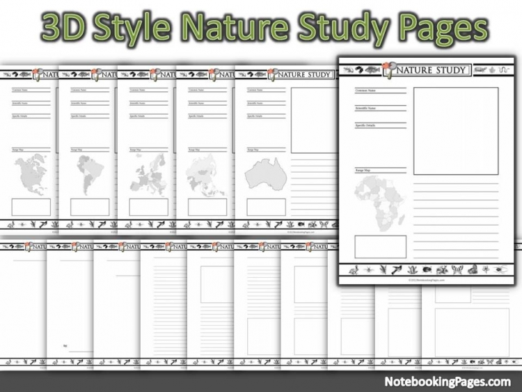 3D Style Nature Study Notebooking Pages