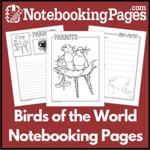 Birds of the World Notebooking Pages