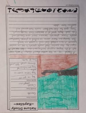 Gavials(age 11)
