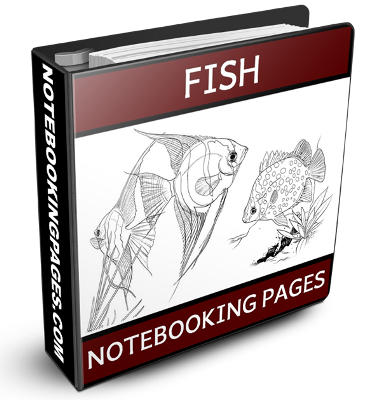 Nature Study Notebooking Pages - Fish