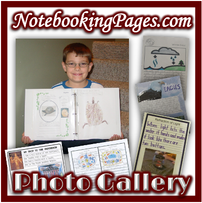 The Notebooking Pages Photo Gallery