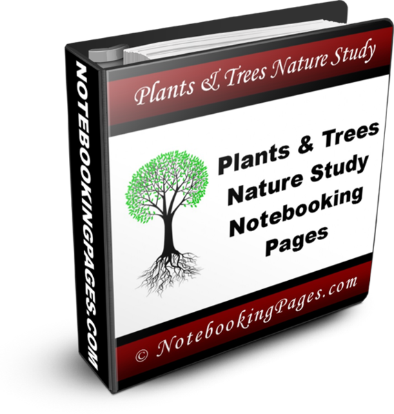 Nature Study Notebooking Pages - Plants & Trees Basic Study