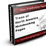 Trees of North America Notebooking Pages