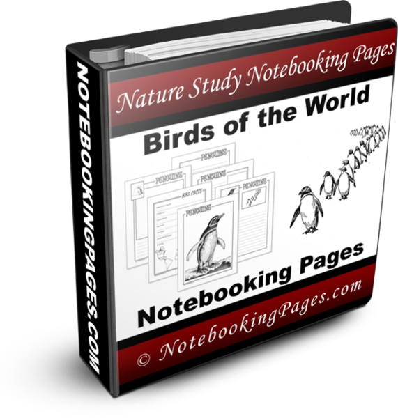 Nature Study Notebooking Pages - Birds of the World