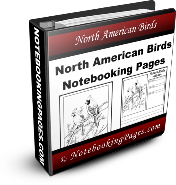 Nature Study Notebooking Pages - North American Birds